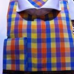 Blue, Orange and Yellow Check cotrast collar Steven Land Shirt
